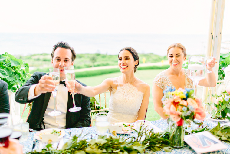 Lynda Williams Beauty Block Island Rhode Island wedding toast